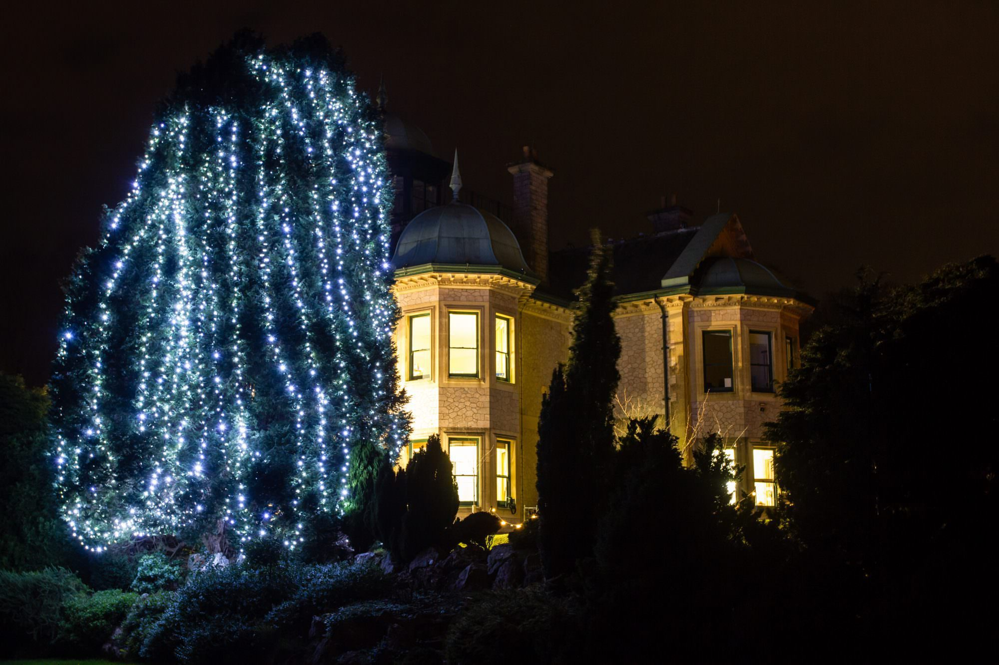 Rowcroft Hospice - Light up a Life